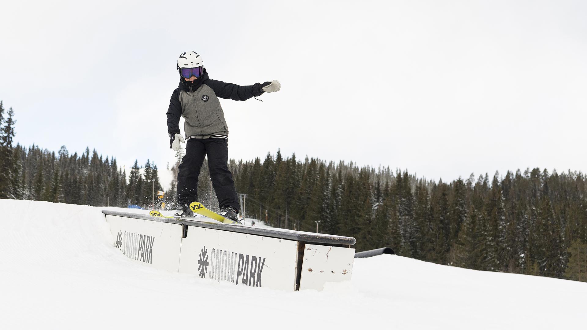 Snowpark intro